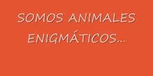 Somos animales enigmáticos