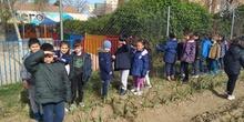 1º de Primaria_Plantamos garbanzo  9