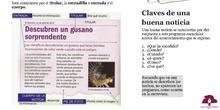PRIMARIA 6º - LENGUA CASTELLANA Y LITERATURA - LA NOTICIA