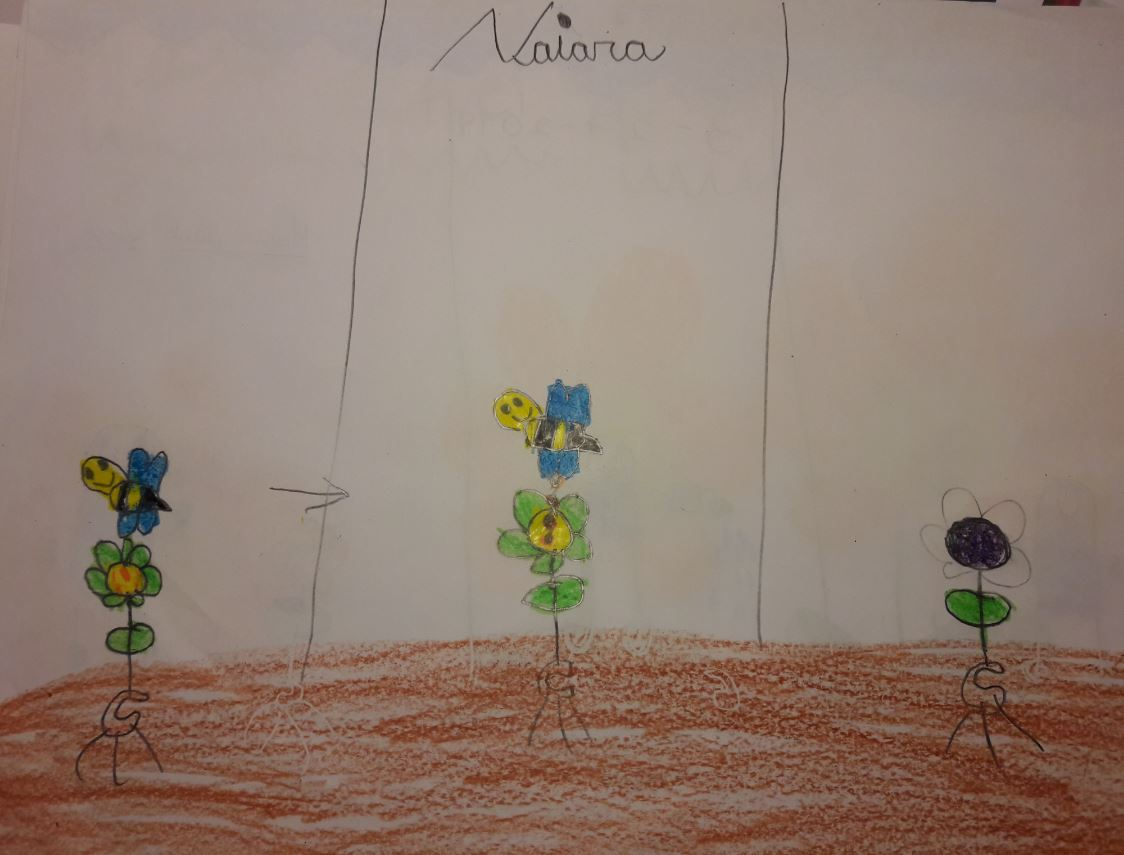 We grow plants in the classroom 8