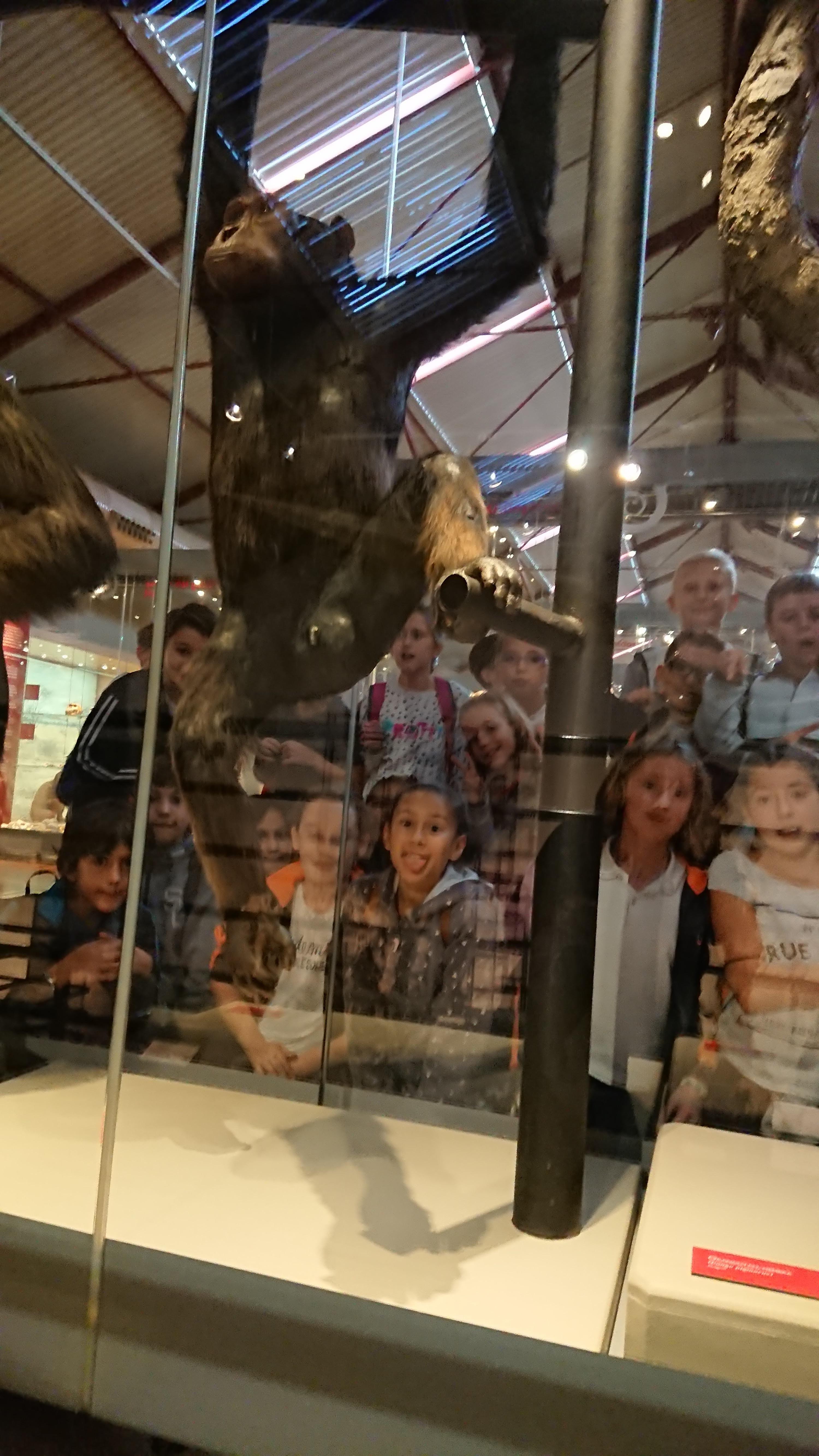 Excursión al museo de ciencias 18