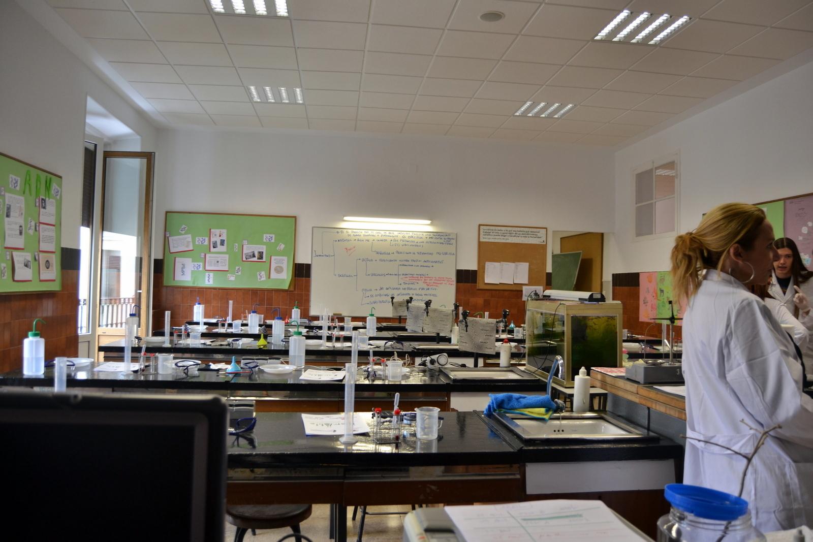 Proyecto de Aprendizaje y Servicio  18