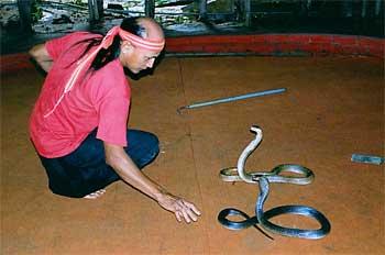 Encantador de serpientes, Tailandia