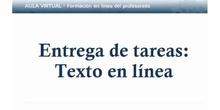 Entrega de tarea: Texto en línea