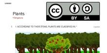 Formulario Plants