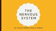 3º SICIENCE NERVOUS SYSTEM