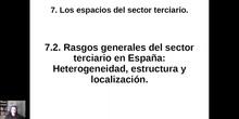 0702 Heterogeneidad de los Servicios en España