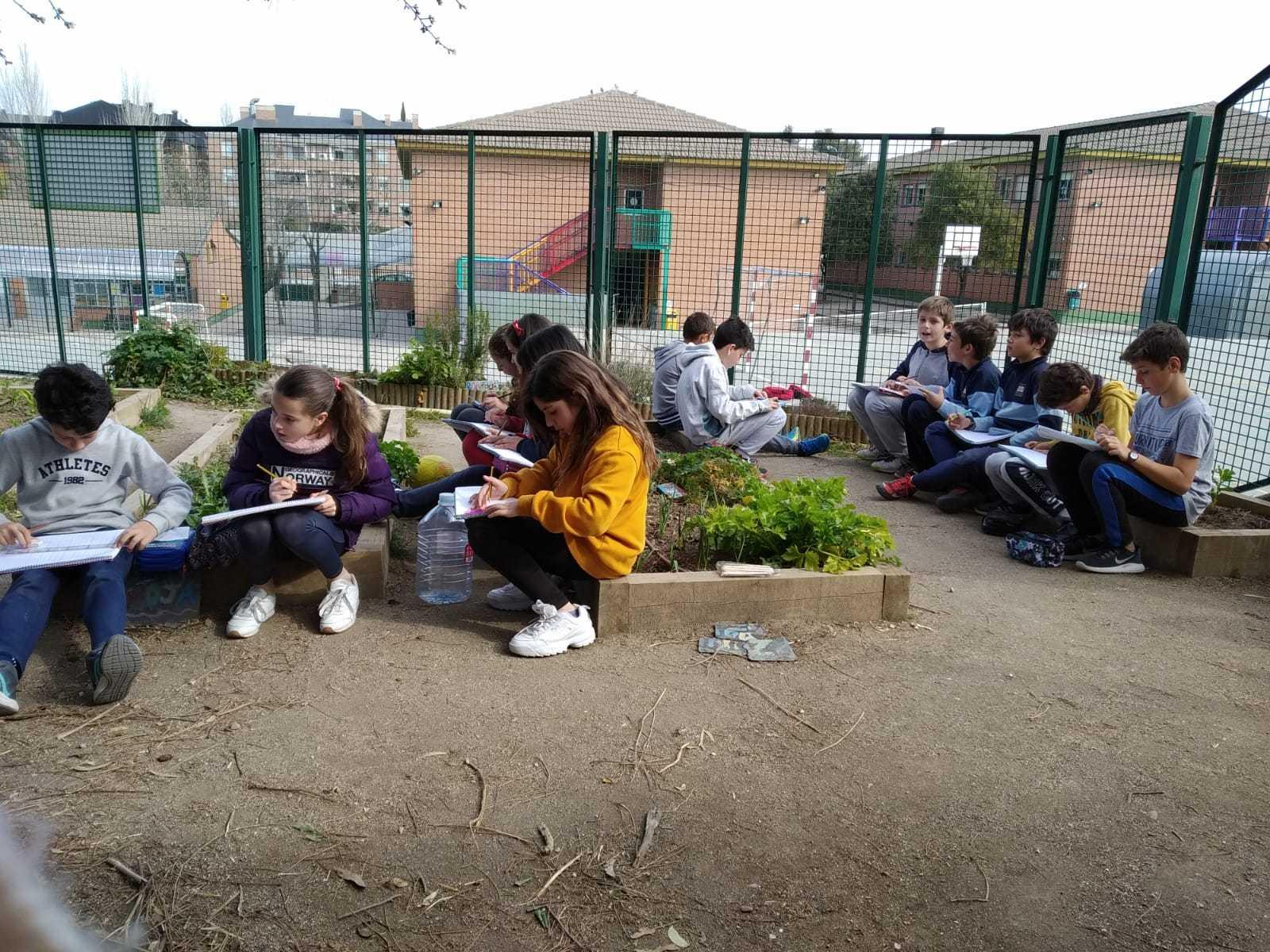 2019_02_24_Quinto termina febrero con las actividades de huerto_CEIP FDLR_Las Rozas_2019 12