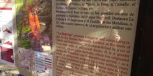La Pedriza. 3º ESO. 2017-2018. 21