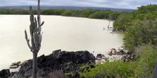 Lagunas de Villamil en la isla de Isla Isabela, Ecuador