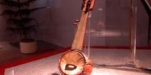 Instrumento tipo sarod, India