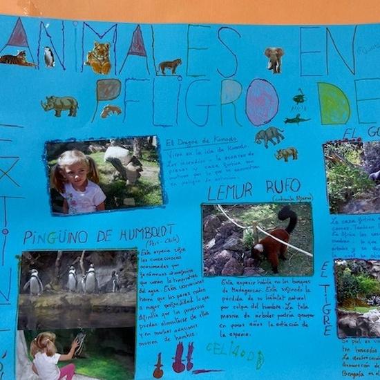 Proyecto animales en extinción 6