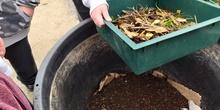 El huerto en febrero_Compost_CEIP FDLR_Las Rozas