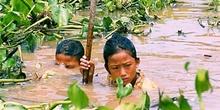 Niños trabajando abriendo sendas para barcos-taxi en el Tonlé Sa