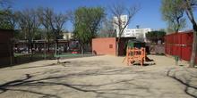 patio infantil5