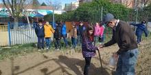 1º de Primaria_Plantamos garbanzo  16