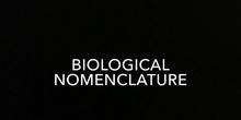 SECUNDARIA -1° ESO - BIOLOGY - BINOMIAL NOMENCLATURE - GRUPO - FORMACIÓN