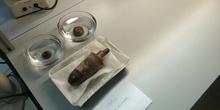 Eliminación de sales solubles en cerámica arqueológica