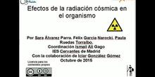 Los efectos de los Rayos Cósmicos en los Astronautas