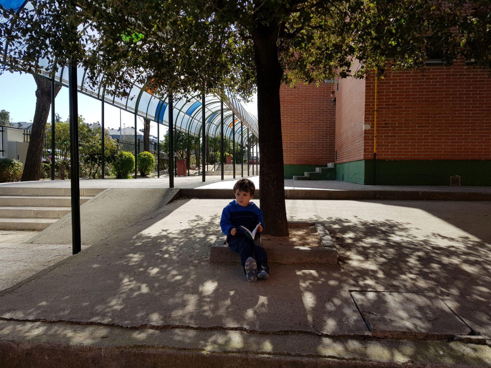 Infantil 5 años y la semana del libro 16