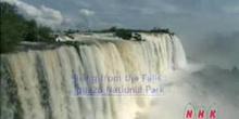 Rising from the Falls: Iguazu National Park: UNESCO Culture Sector