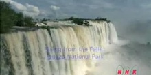 Rising from the Falls: Iguazu National Park: UNESCO Culture Sector
