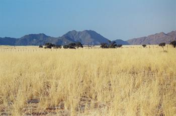 Montañas de Brandberg, Namibia