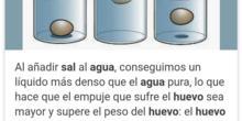 EXPERIMENTO CON AGUA DULCE Y SALADA.