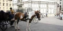Carro en la Plaza del Duomo, Florencia