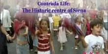 Contrada Life: The Historic centre of Siena: UNESCO Culture Sector