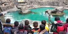Visita al zoo 2019 3