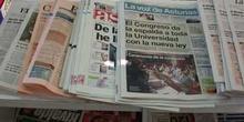 Periódicos (prensa escrita)