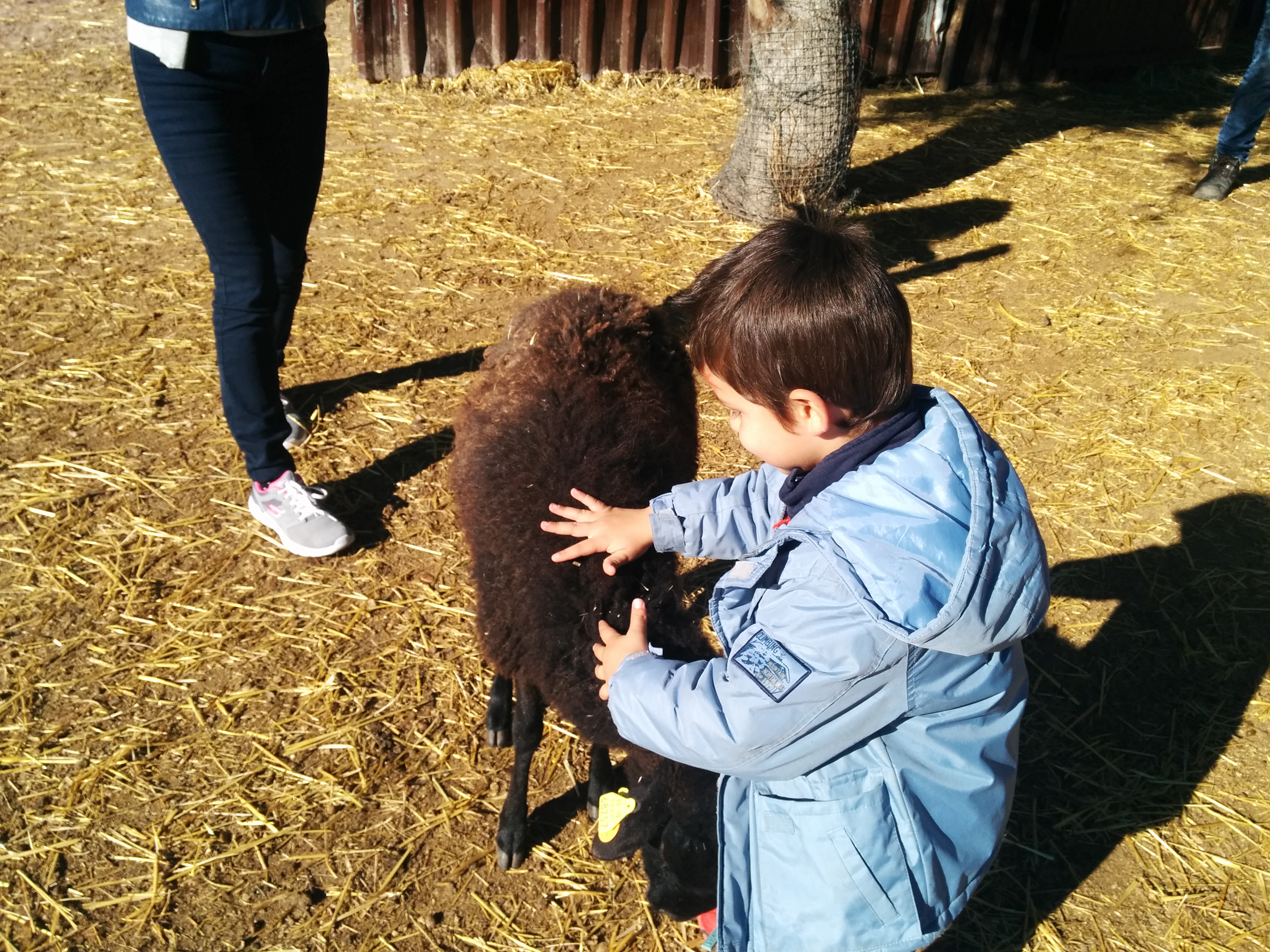 2016_inf 4 años a visita la granja 23
