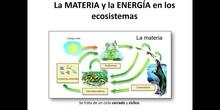 T.SSVV:_5 Materia_energía ecosistemas