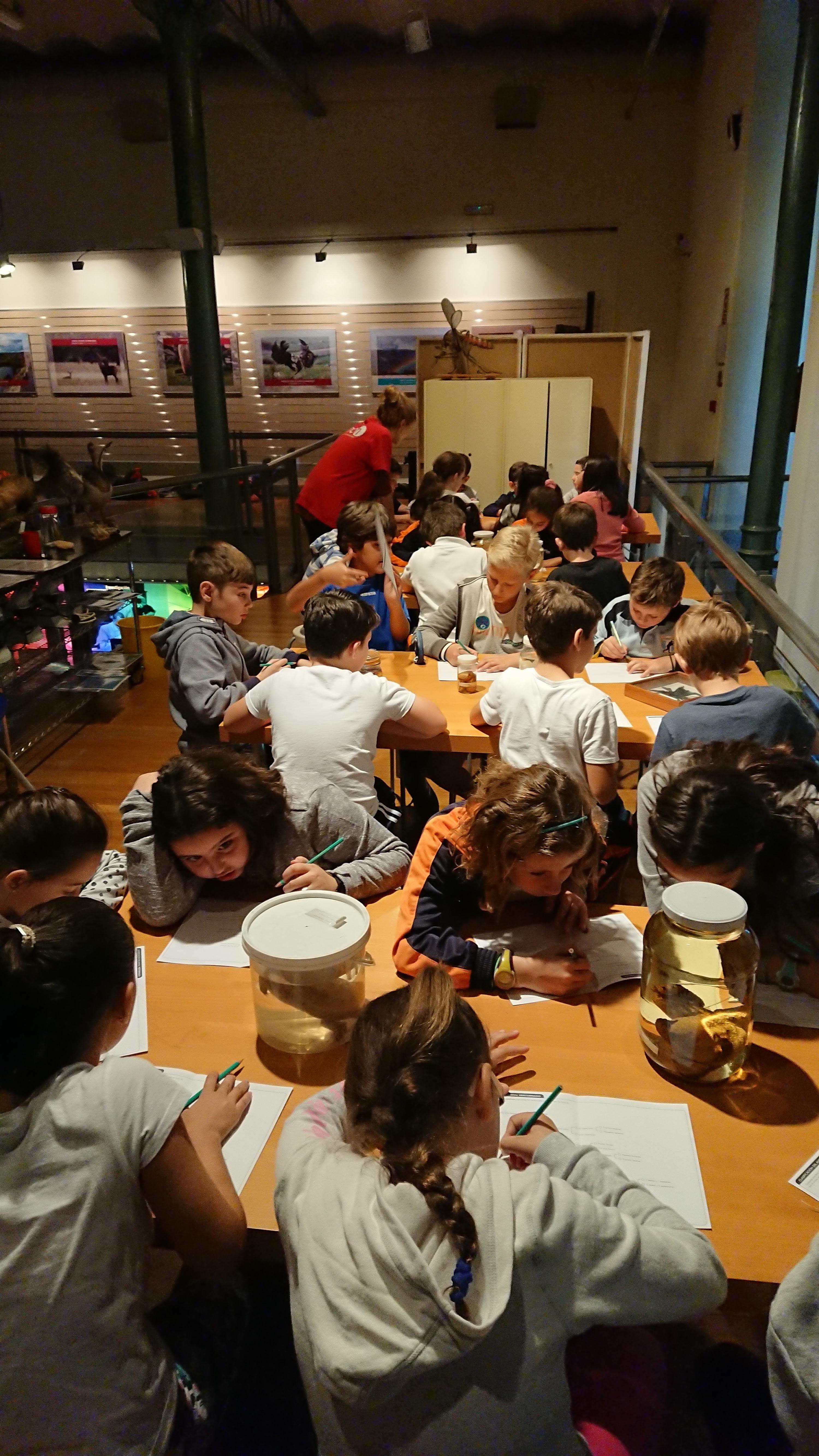 Excursión al museo de ciencias 21