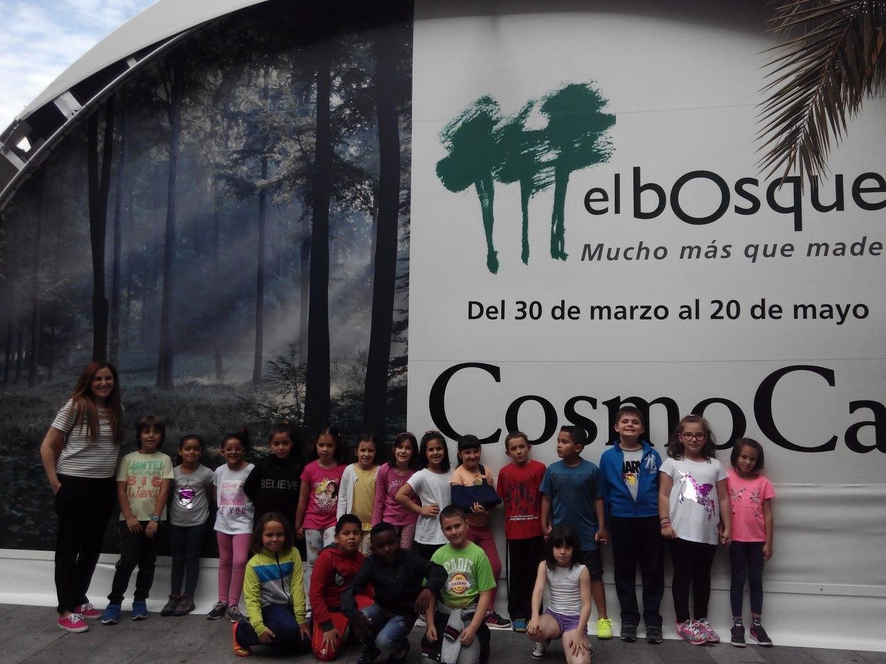 Visita a la exposición El Bosque. 1º 2º Primaria. CEIP Pinocho. 2016/17 9