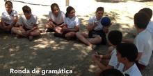PRIMARIA 5º - APRENDIENDO AL AIRE LIBRE - ACTIVIDAD