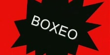 Boxeo en el ring I