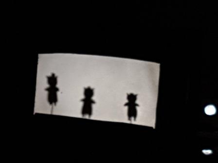 Los pulpos y las sombras chinas 2