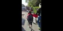 2019_05_24_Rutas Pedibús Fernando de los Ríos-Cristo Rey_CEIP FDLR_Las Rozas