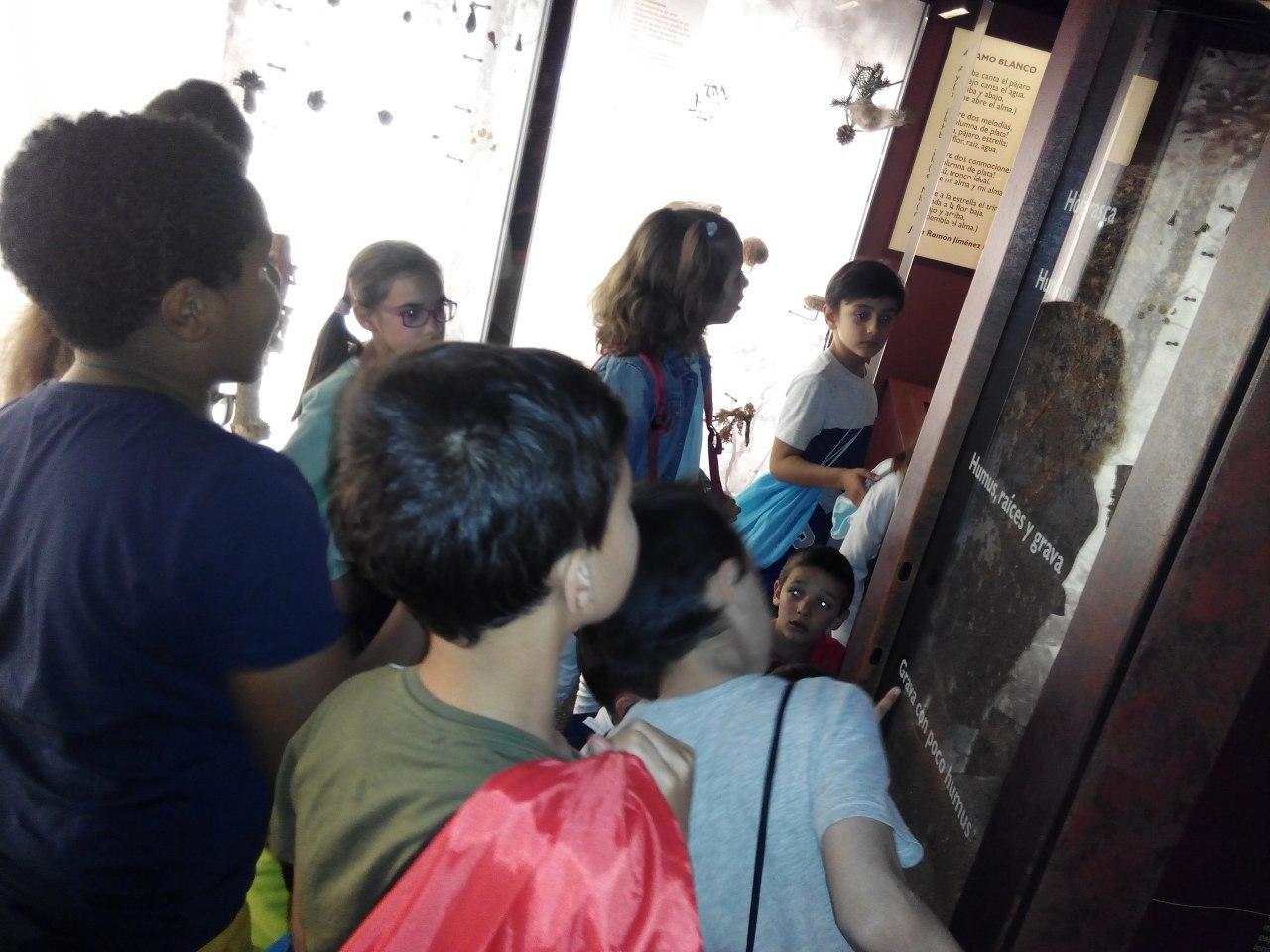 Visita a la exposición El Bosque. 1º 2º Primaria. CEIP Pinocho. 2016/17 4