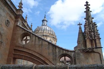 Arbotante de la Catedral Nueva de Salamanca, Castilla y León