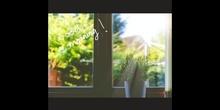 PRIMARIA - 2º - MY MORNING ROUTINE - INGLÉS - FORMACIÓN