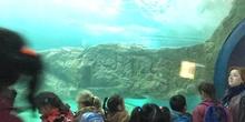 Excursión al zoo 5 años, 1º y 2º Luis Bello 33