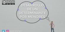 Desarrollo de un determinante por los elementos de una línea