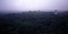 Amanecer sobre Tikal desde el Templo IV, Guatemala