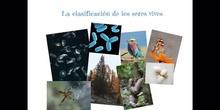 SECUNDARIA - 1° ESO - CLASIFICACIÓN SERES VIVOS - BIOLOGÍA - FORMACIÓN