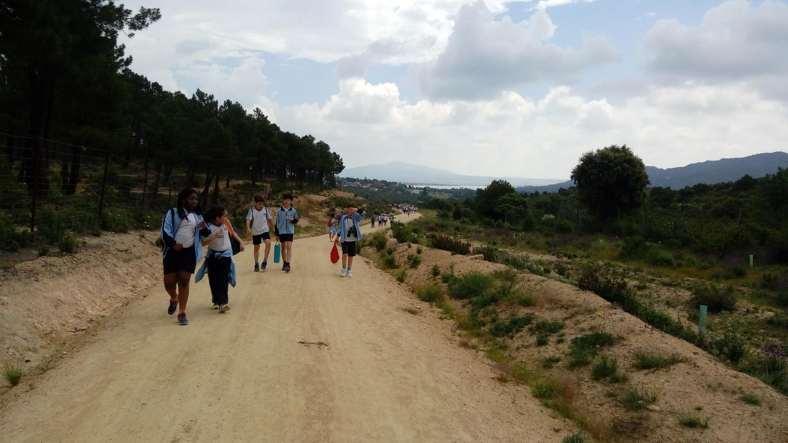 Camino de Santiago 11
