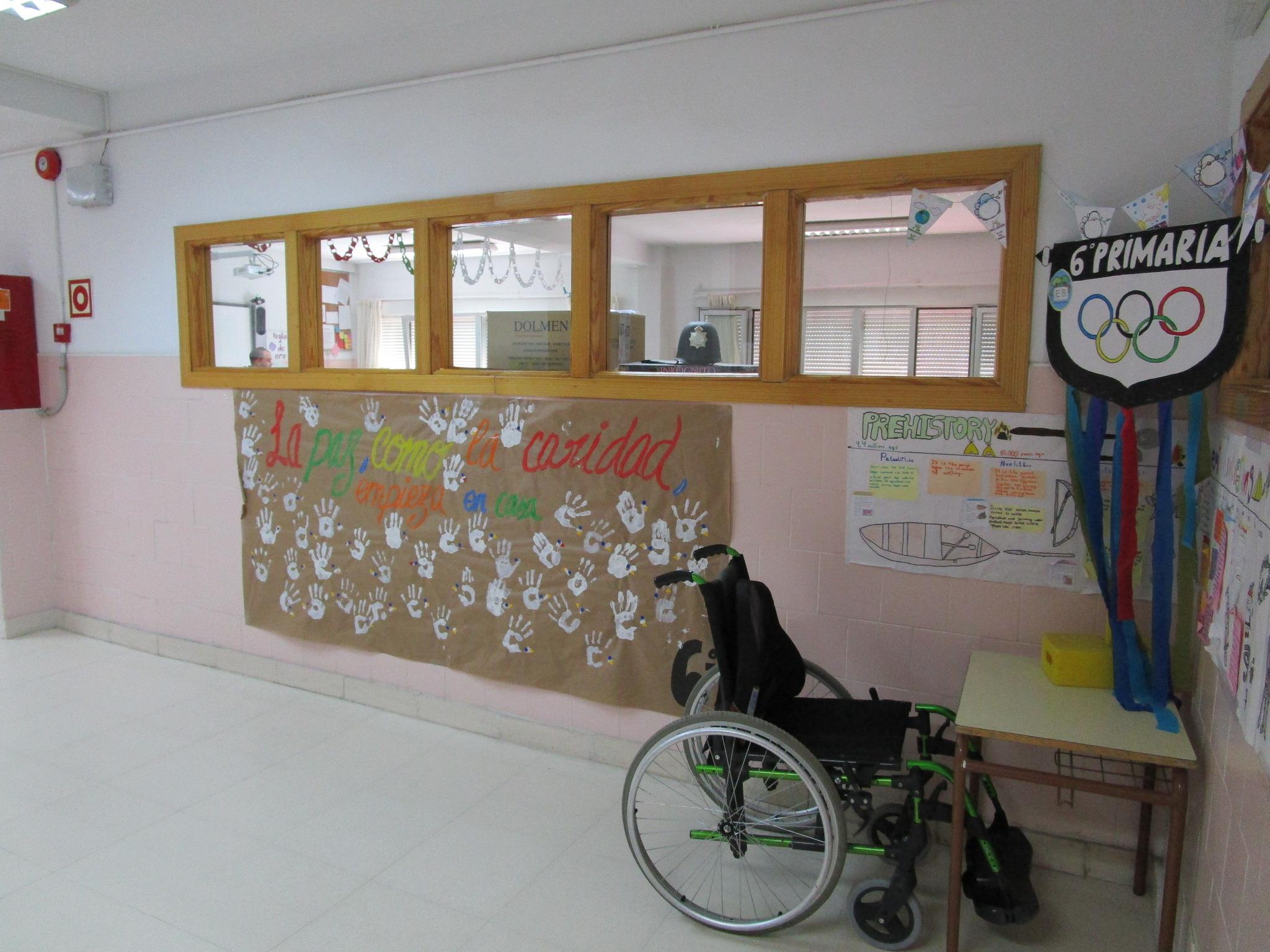 primaria6
