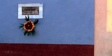 Placa conmemorativa y flores